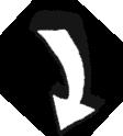 arrow-WHITE-Down